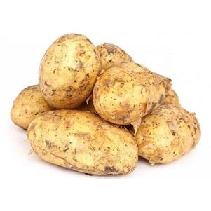 Картофель св.  Египет