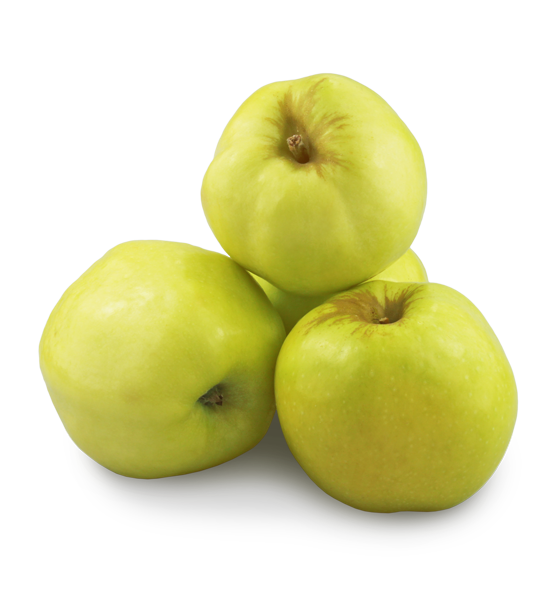 Яблоки св. Антоновка