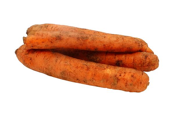 Морковь св. Шушары