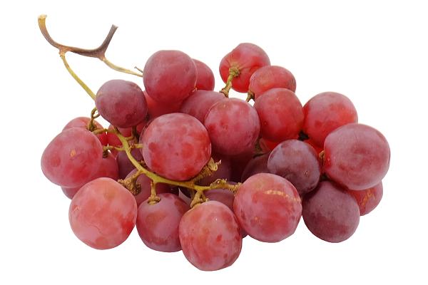 Виноград св. Ред Глоб